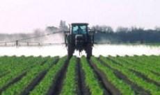Pesticiden spuiten in de landbouw