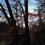 Marlyand-Annapolis-trail