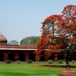 Agra, Taj Mahal Courtyard