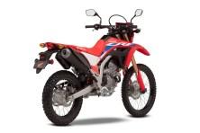 2021 HONDA CRF300L