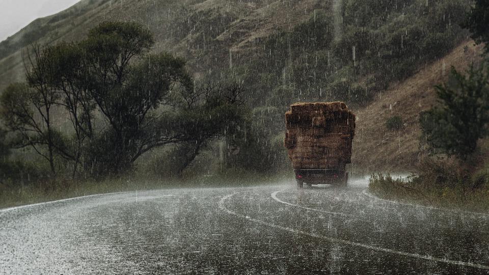 ツリー 雨 道路 トラック リック あられ 緑 自然 ドロップ 誰も 天気予報 屋外