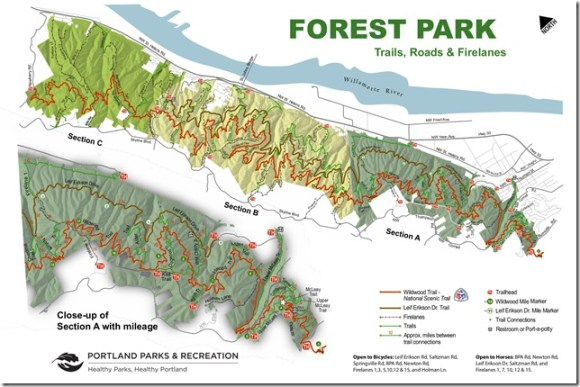 Forest Park Trails Printable Map P1