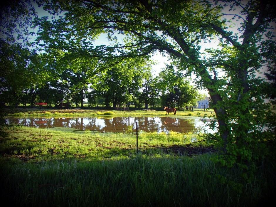 Allen County Rural Scene