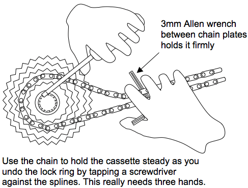 How to use the chain to hold the cassette in place when you want to remove the lock ring