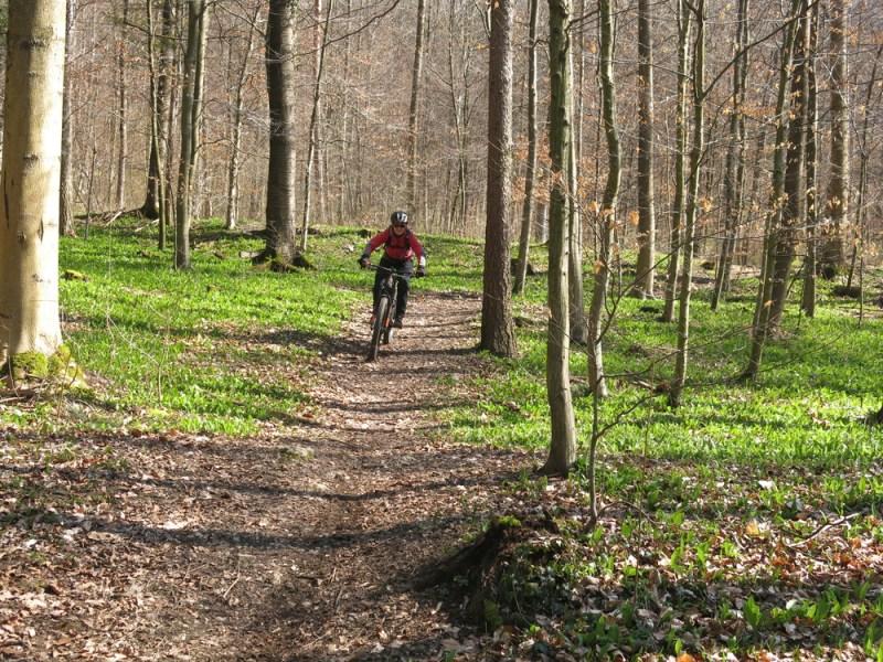 Mountainbike Aarburg