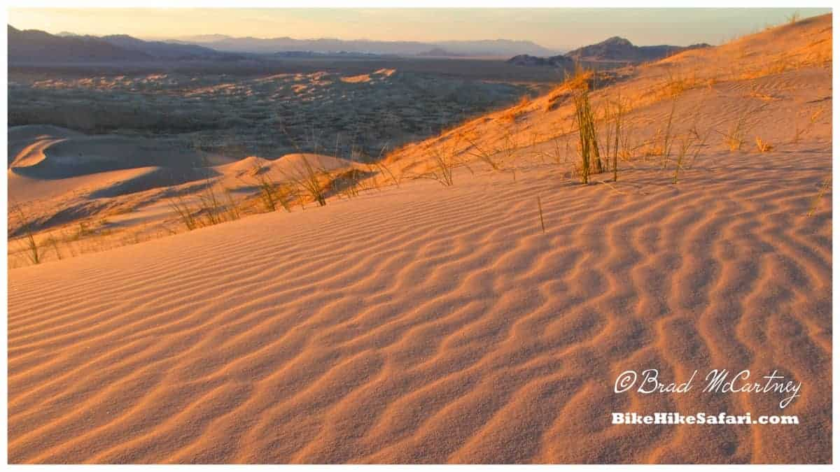 Cycling the Mojave Desert - BikeHikeSafari