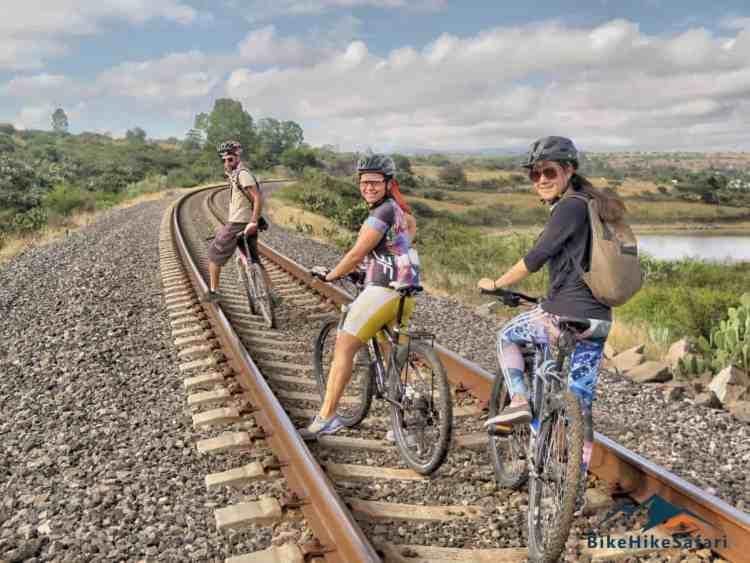 Cyclin San Miguel