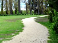 Open tracks