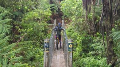Suspension Bridge Challenge
