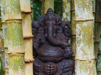 Lord Ganesh in Black Tample
