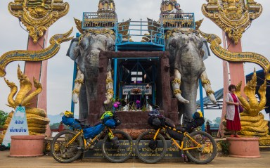 Elephants of Golden Triangle