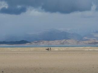 Osel a kolo. Jezero Karakul, Tádžikistán