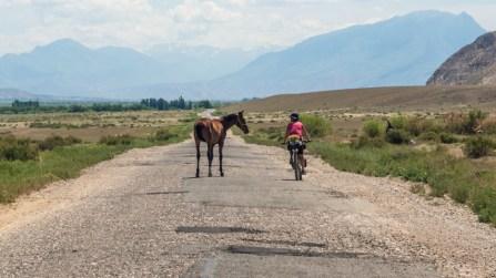 Chceš svézt? Oblast Narynu, Kyrgyzstán