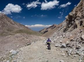 Run, goat, run! Tosor Pass, Kyrgyzstan