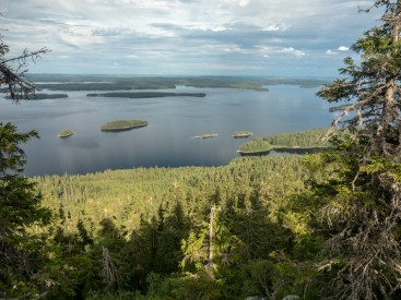 Koli National Park. Finland