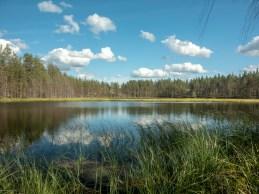 Jezírko. Národní park Rokua, Finsko