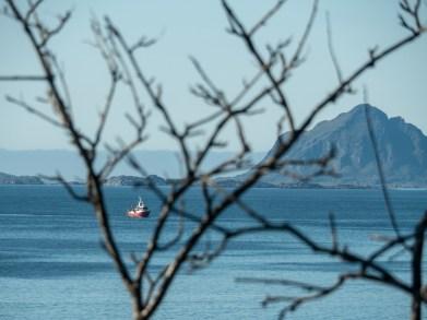 Rybářská loď. Vesterålen, Norsko