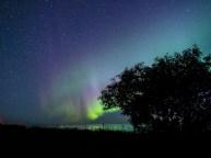 Aurora Borealis. Hadel, Norsko