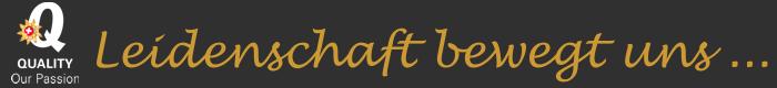 Logolinefix1