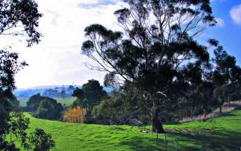 The Great Southern Rail Trail