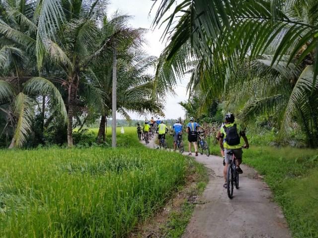 C:\Users\Owner\Desktop\BOB Vietnam Tour\20191106_through rice paddies and coconuts.jpg