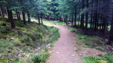 Bonar Bridge MTB Trail