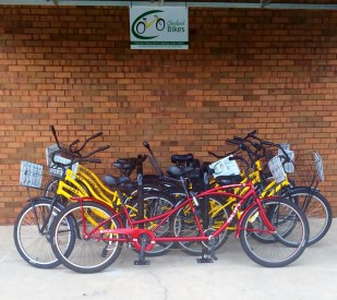 WP Public Library: Books, Movies, and Bikes?