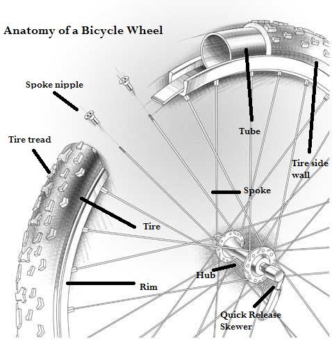 PatchitForward: How to Patch a Flat Tire - Bike Works
