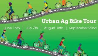 A rainbow array of cartoon cyclists ride along a path with a green background.