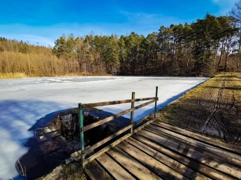 Pond Na Losích - check the softness of the ground