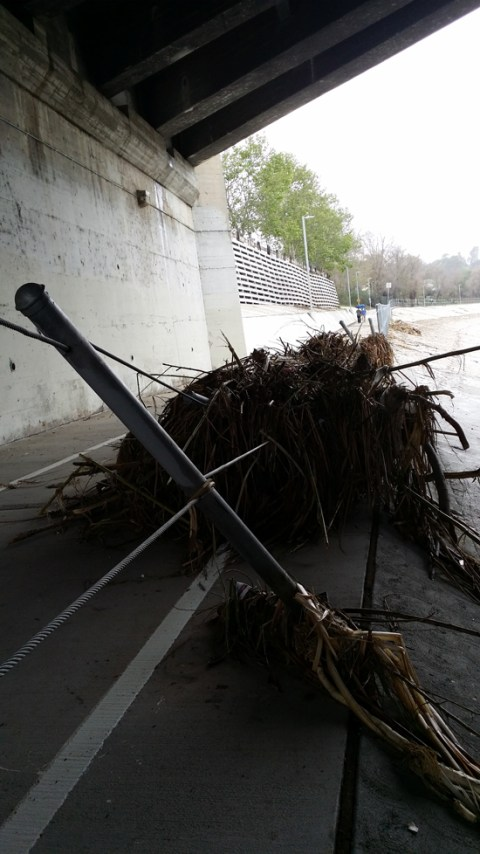 Post-storm debris on the LA River bike path; photo by Patrick Pascal.