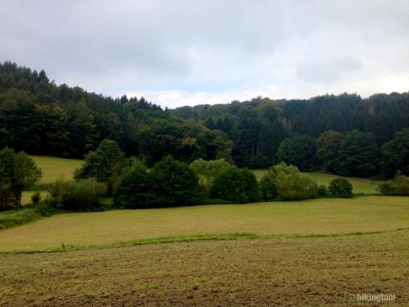 Schöne Ausblicke rüber in die Mischwälder