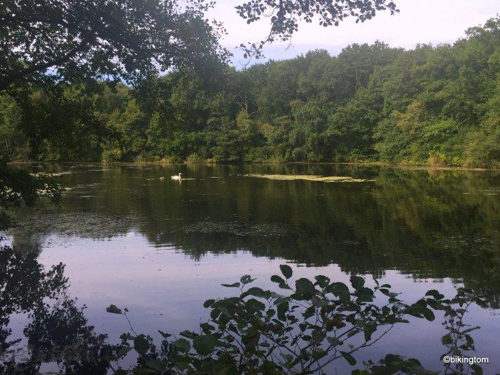Fahrradtour bikingtom Beversee Naturschutzgebiet