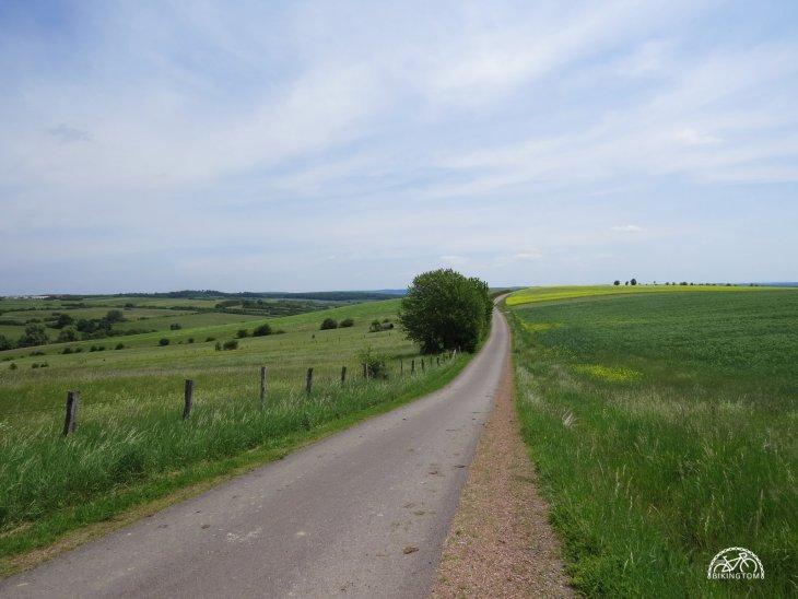 bikingtom,Lothringen,Fahrrad
