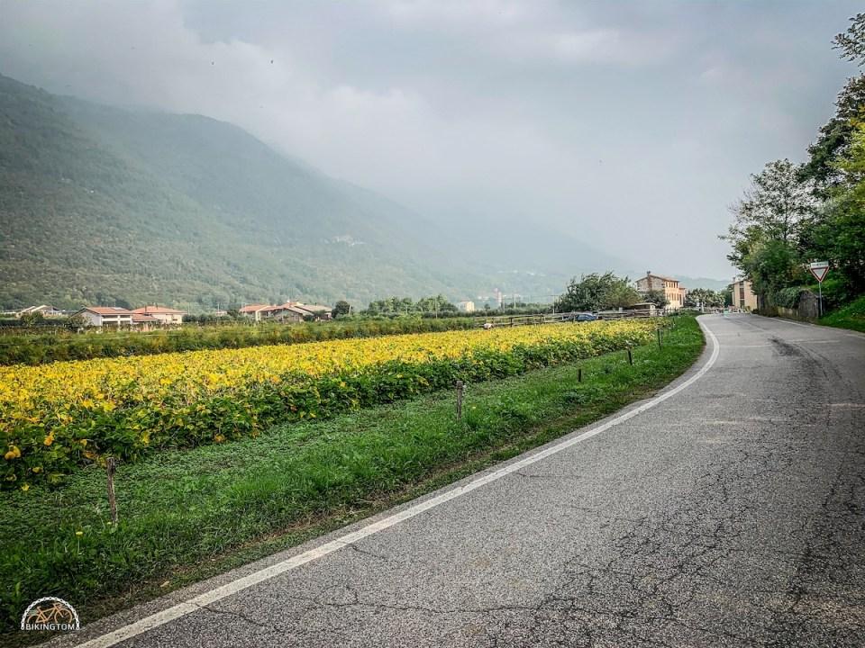 Monte Grappa,bikingtom