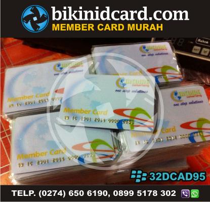 kartu anggota murah - member card MLM