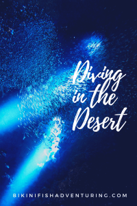 Diving in the desert
