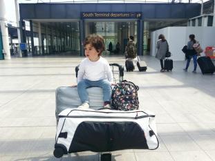 samsonite - family luggage