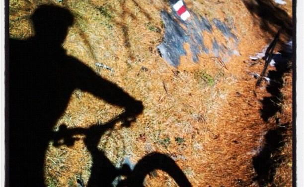 Mountain bike à Ovronnaz.