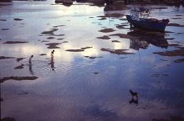 Le chien, les enfants et la mer