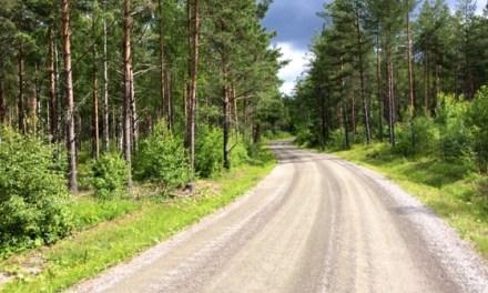Les «strade bianche» de Suède