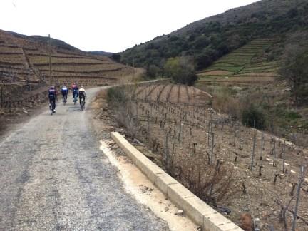 En direction du col (le mur plutôt) de Banyuls...
