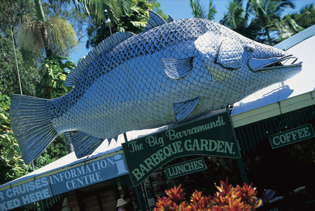 Te Big Barramundi, Daintree QLD