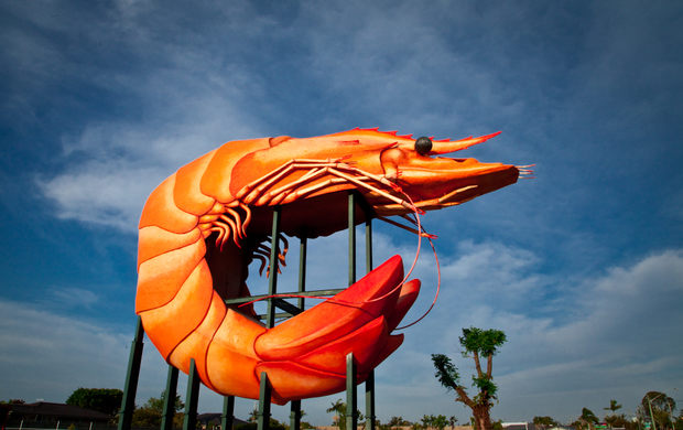 The Big Prawn, Ballina NSW
