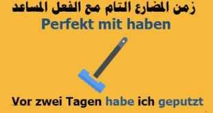 زمن-المضارع-التام-فى-الألمانية-والأفعال-التى-تأخذ-الفعل-المساعد-Habenتكوين-الجملة