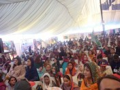 @EalingNorth We are #PPP we give respect to women workers A respectable view #PPPFoundationDay @Qamarzkaira