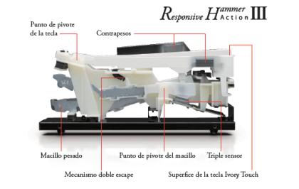 hammer III