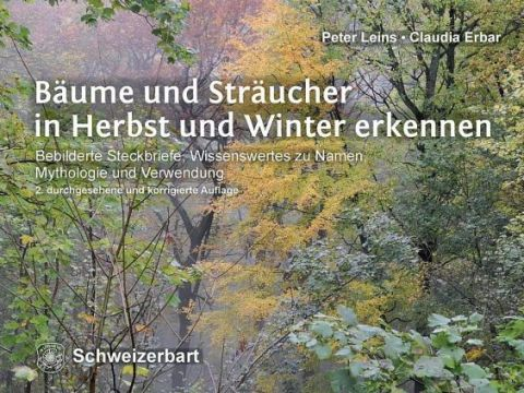 sträucher bilder mit namen bäume und sträucher in herbst und winter erkennen