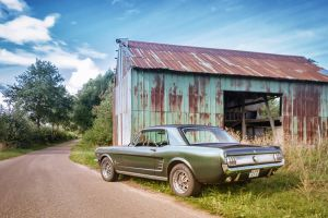 Mustang vor der Scheune