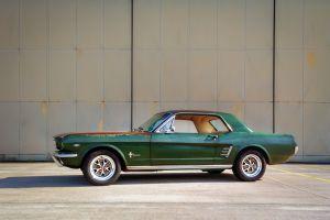 Mustang vor der großen Halle